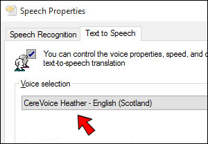 Support questions for the Scottish Voice